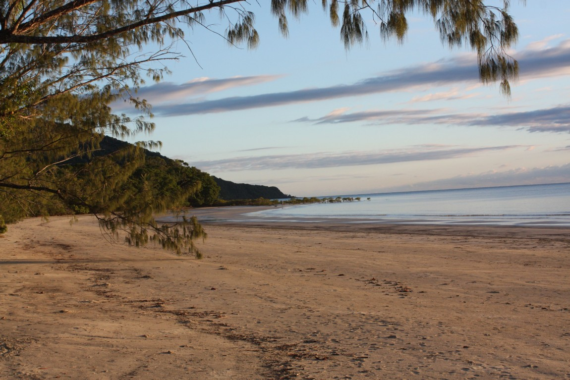 cape tribulation plage