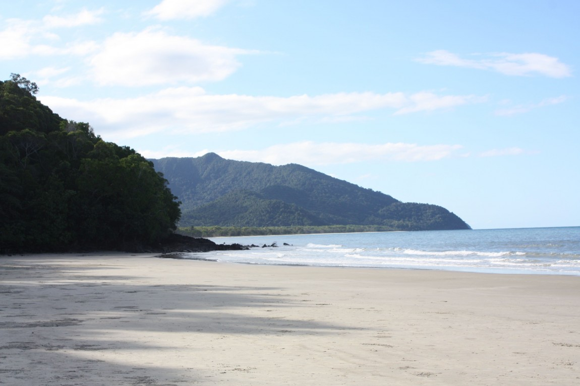 foret et mer cape tribulation